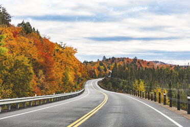 Canada, Ontario, main road through colorful trees in the Algonquin park area - WPEF00705