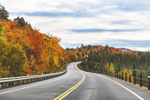 Canada, Ontario, main road through colorful trees in the Algonquin park area - WPEF00705