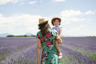 France, Provence, Valensole plateau, Mother and daughter walking among lavender fields in the summer - GEMF02143