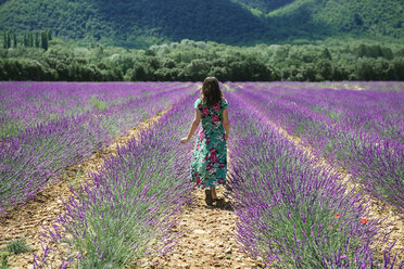 France, Provence, Valensole plateau, woman walking among lavender fields in the summer - GEMF02152