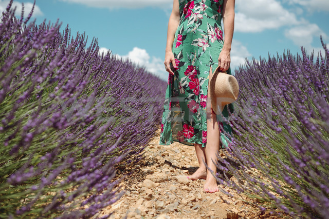 France, Provence, Valensole plateau, Barefoot woman walking among lavender fields in the summer - GEMF02158