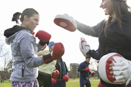 Determined women boxing in park - CAIF21186