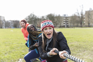 Determined team pulling rope in tug-of-war in park - CAIF21195
