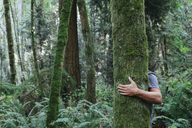 Man hugging tree in lush, green forest - MINF00730