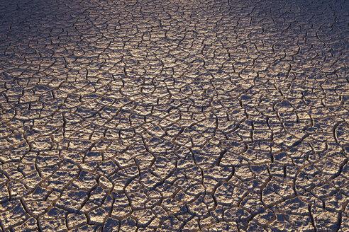 Dry cracked desert surface, Black Rock Desert in Nevada, USA - MINF00835