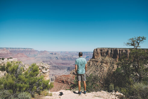 USA, Arizona, Grand Canyon National Park, Grand Canyon, back view of man looking at view - GEMF02190