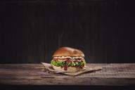 Veggie Burger - NAF00108