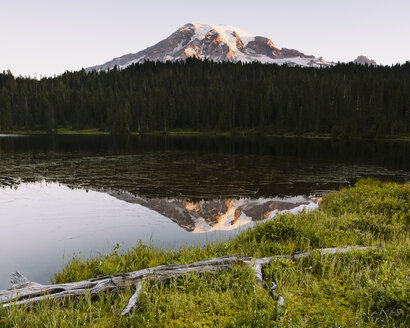 View of Mount Rainier from Reflection Lakes at dawn in Mount Rainier national park. - MINF02118