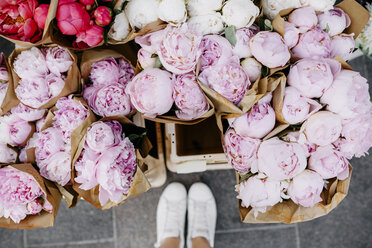 Bunches of peonies at flower market - ABIF00742