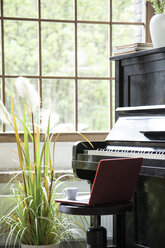Piano in comfortable loft apartment - FKF03033