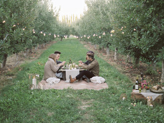 Apple orchard. Group of people having a picnic on the grass. - MINF02273