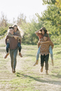 Apple orchard. Two couples walking along a path. - MINF02288