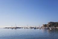 Italy, Liguria, Riviera di Levante, Golfo del Tigullio, Rapallo, harbour - GWF05592