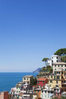 Italy, Liguria, Cinque Terre, Riomaggiore, Riviera di Levante, typical houses and architecture, typical colourful houses - GWF05601