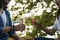 Close-up of couple clinking champagne glasses at a tree - AFVF01117
