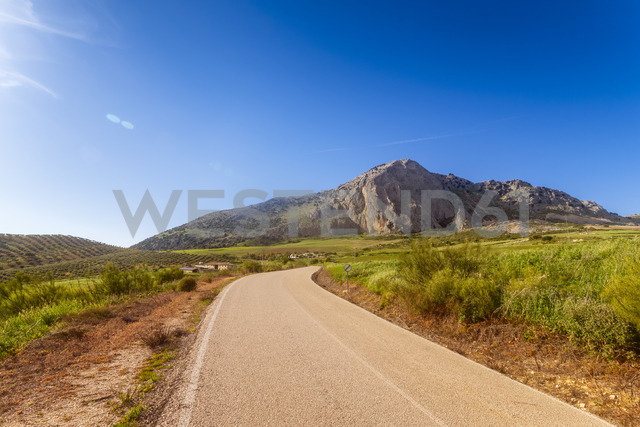 Spain, Andalucia, A-7204 road - SMAF01062 - Scott Masterton/Westend61