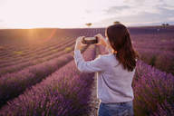 France, Valensole, back view of woman taking photo of lavender field at sunset - GEMF02219