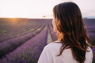 France, Valensole, back view of woman in front of lavender field at sunset - GEMF02228