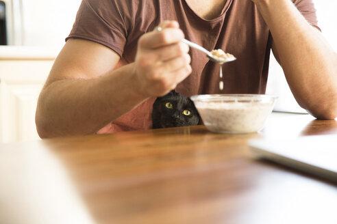 Black cat watching man eating muesli - MFRF01157