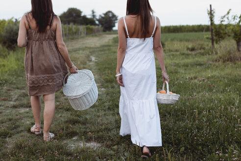 Friends walking to vineyard carrying picnic baskets - MAUF01590