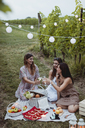 Friends having a summer picnic in vineyard - MAUF01635