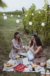 Friends having a summer picnic in vineyard - MAUF01635