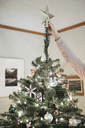 A person decorating a Christmas tree at home. - MINF03439