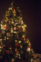 Christmas decorations. A traditional real Christmas tree, decorated with lights. - MINF03616