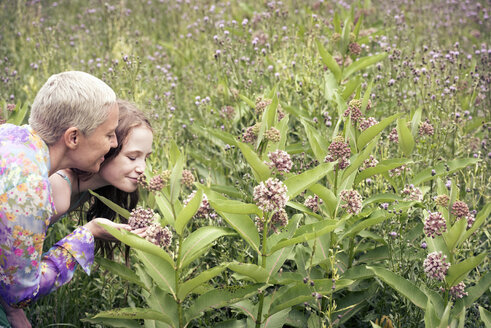 A mature woman and a young girl in a wildflower meadow looking closely at the flowers. - MINF04110