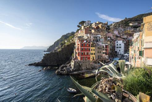 Italy, Liguria, La Spezia, Cinque Terre National Park, Riomaggiore - RPSF00221