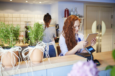 Young woman working in a cafe using tablet at the counter - ABIF00869
