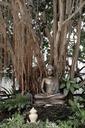 Thailand, Chiang Rai, Wat Rong Khun, Buddha sculpture - HL01100