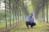 A man crouching and examining a handful of soil. - MINF04989