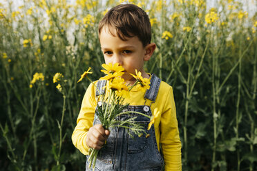 Portrait of little boy smelling picked flowers in nature - JRFF01778