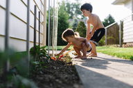 Bare chested young boy and girl standing by a plant bed in a garden, digging in the soil. - MINF05073