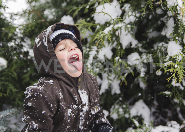 Boy, child standing in front of a tree covered in snow with mouth open. - MINF05130