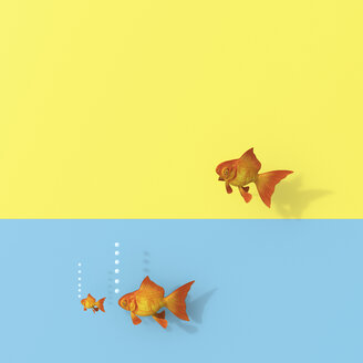 3D rendering, Goldfish group swimming in water, one trying to escape - UWF01476