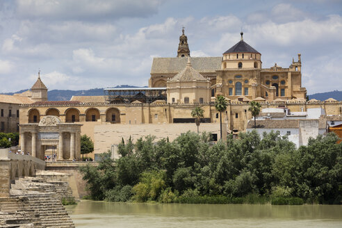 Spain, Andalusia, Cordoba, Mosque–Cathedral, Puerto del Puente - WIF03550