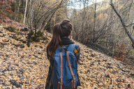 Spain, Ordesa y Monte Perdido National Park, back view of woman with backpack in autumnal forest - AFVF01295