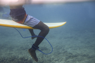 Maledives, Indian Ocean, surfer sitting on surfboard, underwater shot - KNTF01188