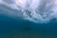 Maledives, Indian Ocean, surfer on surfboard, underwater shot - KNTF01197