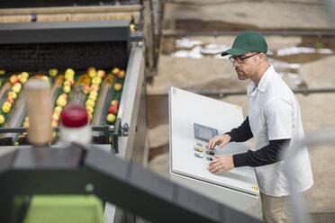 Worker managing apple sorting machine - ZEF15926