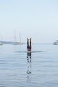 Man doing handstand in water - AFVF01393