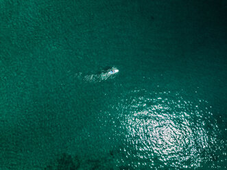 Croatia, Cres, Adriatic Sea, Aerial view of stand up paddle surfing - DAWF00705
