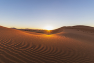 Africa, Namibia, Namib desert, Naukluft National Park, sand dunes against the morning sun - FOF10090