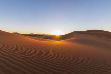 Africa, Namibia, Namib desert, Naukluft National Park, sand dunes against the morning sun - FOF10090