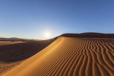 Africa, Namibia, Namib desert, Naukluft National Park, sand dunes against the morning sun - FOF10093