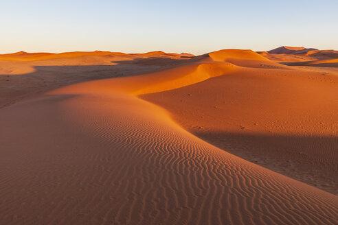 Africa, Namibia, Namib desert, Naukluft National Park, sand dune in the morning light at sunrise - FOF10108