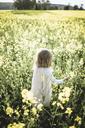 Back view of little girl walking in rape field - PSIF00005