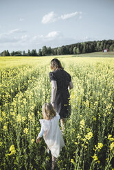 Back view of little girl walking with her mother in rape field - PSIF00011